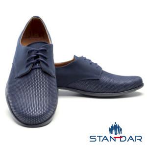 STANDAR B11